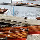 Boats at Lake Windermere by JenniferLouise