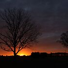 Silhouettes At Sunrise by JGetsinger