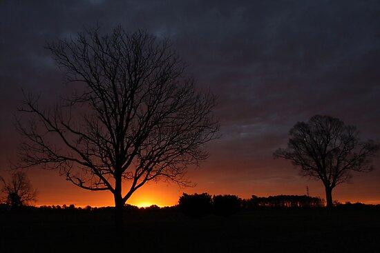 Silhouettes At Sunrise by JGetsinger