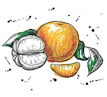 Hand drawn Tangerine by epine