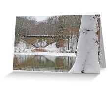 Glacier Lake In Winter Greeting Card