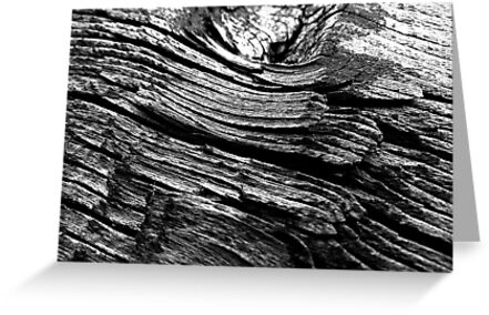 Woodstructure-30 BW by PierPhotography