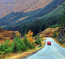 Road trip by dombrown