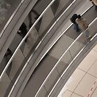 In the Reichstag dome by pahas