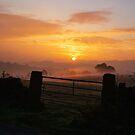 sunrise by KathO