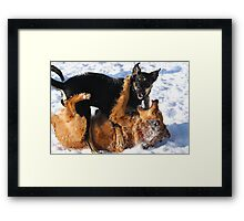 Mia and Unknown Framed Print