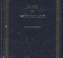 alice in wonderland by shoshgoodman