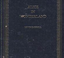 alice in wonderland by shoshgoodman
