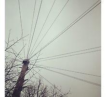 Telegraph wires Photographic Print