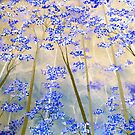 Blue & Taupe Forest by Herb Dickinson