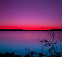 Silhouette Aglow   by Lincoln Stevens