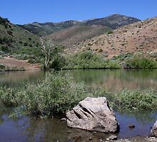Peavine Pond,Peavine Mountain,Reno,Nevada USA by Anthony & Nancy  Leake