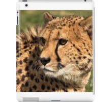 Look back ? in anger! iPad Case/Skin