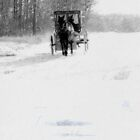 The Snowy Road by Leann  Rardin