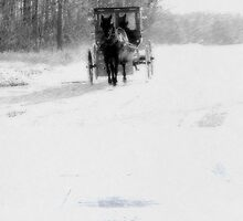 The Snowy Road by Leann  Rardin