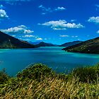 Pelorus Sounds by srhayward
