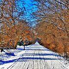 Snow Trail by EBArt