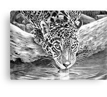 After Dinner Drink Canvas Print