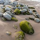 Rocks at Window Pane Bay by tasadam