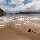 Spain Bay, Port Davey, Southwest Tasmania by tasadam