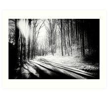 Snow and Tree Shadows Art Print