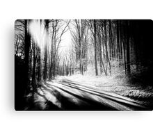 Snow and Tree Shadows Canvas Print