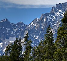 Towering Tetons by Michael Kirsh