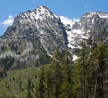 Grand Teton Snowy Peak by Michael Kirsh