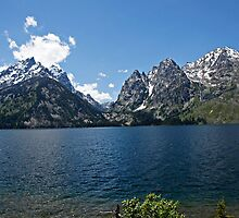 Jenny Lake Deep Blue by Michael Kirsh