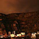 The Battery St.John's  at night by Michael Skeard