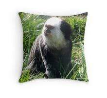Marmoset | Monkey | *NEW INCLUDED* Throw Pillow