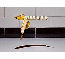 Floating sliced banana Photographic Print
