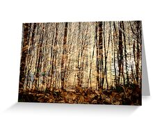 Multiple forest Greeting Card