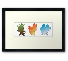 Pokemon X & Y Starters  Framed Print