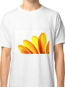 Yellow daisy Petals Macro Classic T-Shirt