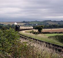 Steam train in the English Countryside by Laura and Mark Woodward