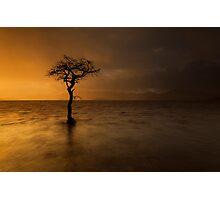 Light & Rain Photographic Print