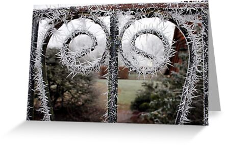 Winter Gate  by Miss Dunk