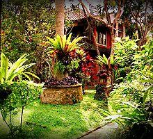Ubud, Bali by silentstead