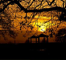Winter Sunset by David Plater