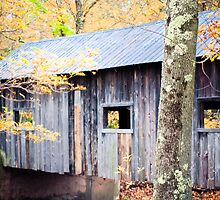 Vermont Covered Bridge by apalmiter