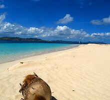 Beach in St Croix by apalmiter
