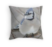Blues and Grays Throw Pillow
