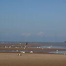 Blackpool by Pawel J