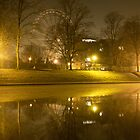 The Wheel of York at Night by redown
