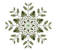 Snow Tree by Cagdas Kaya