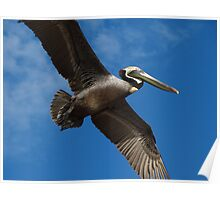 I'm Flying Like A Bird Through The Sky - Estoy Volando Como Un Pajaro En El Cielo Poster
