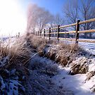 A Dusting of Snow In Our Irrigation Ditch by trueblvr