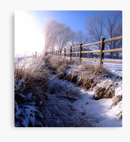 A Dusting of Snow In Our Irrigation Ditch Canvas Print