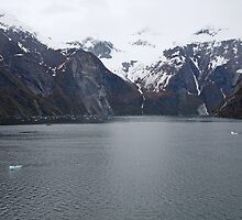 Tracy Arm Fjord in ALASKA USA by Keith Larby